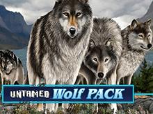 Бесплатный гаминатор игрового портала: Неукротимая Волчья Стая